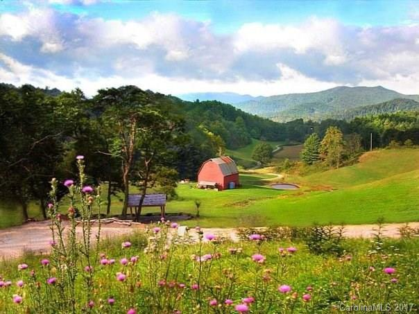 #3 Winding Trail Farms #3, Clyde, NC 28721 (#3274385) :: LePage Johnson Realty Group, LLC