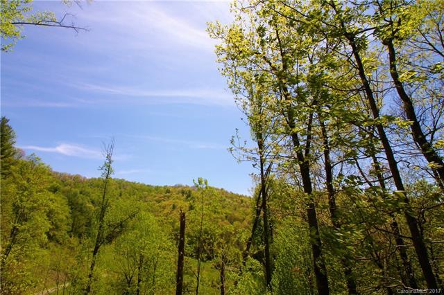 #5 Winding Trail Farms #5, Clyde, NC 28721 (#3274401) :: LePage Johnson Realty Group, LLC