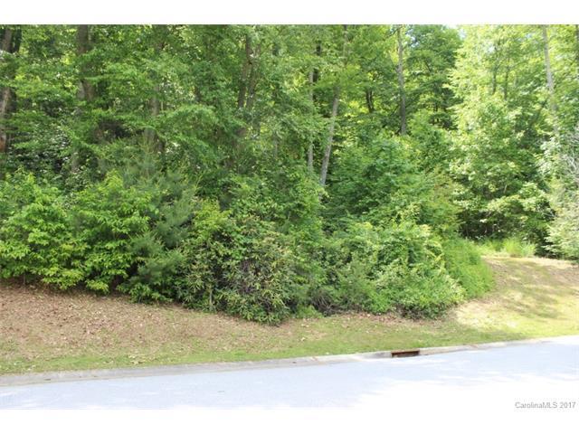 290 Mistletoe Trail, Hendersonville, NC 28791 (#3275864) :: Puffer Properties