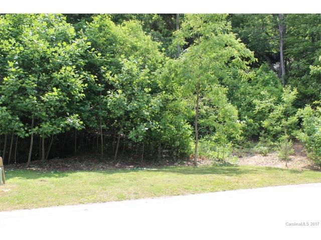 330 Mistletoe Trail, Hendersonville, NC 28791 (#3275875) :: Puffer Properties