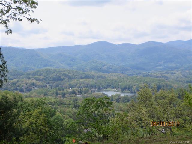 TBD Breckenridge Road, Waynesville, NC 28785 (#3276377) :: Puffer Properties