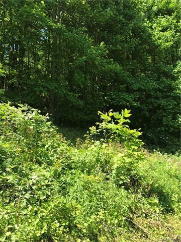 9 Haw View Drive #9, Mars Hill, NC 28754 (#3277439) :: Rinehart Realty