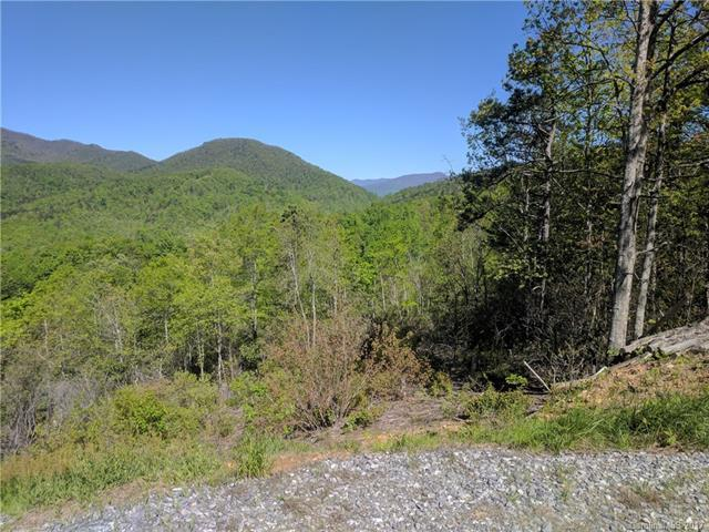 259 Winding Ridge Road #1, Black Mountain, NC 28711 (#3278697) :: Exit Realty Vistas