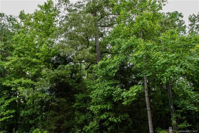 3495 Shady Cove Court, Belmont, NC 28012 (#3278920) :: Team Southline