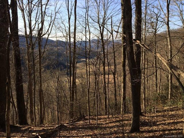 Lot # 43 Triple Creek Drive #43, Clyde, NC 28721 (#3279019) :: RE/MAX Four Seasons Realty