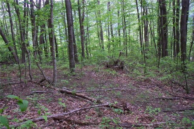 Lot 107 Davy Crockett Drive, Maggie Valley, NC 28751 (#3282444) :: Rinehart Realty