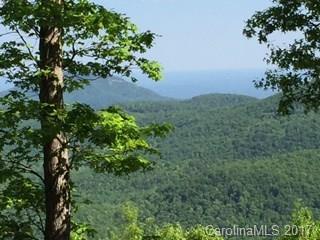 lot 4 High Cliffs Trail, Black Mountain, NC 28711 (#3285233) :: Puffer Properties