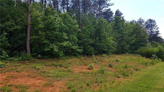 0 Princeton Drive 15&16, Taylorsville, NC 28681 (#3288741) :: Stephen Cooley Real Estate Group