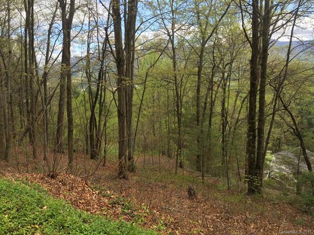 1165 Scenic Circle, Waynesville, NC 28786 (#3291670) :: Mossy Oak Properties Land and Luxury