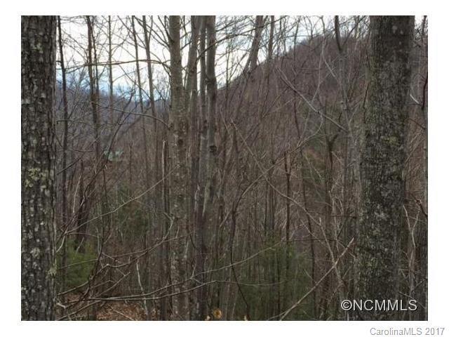 Lot 83 Arcadia Falls Way, Black Mountain, NC 28711 (#3295344) :: Puffer Properties