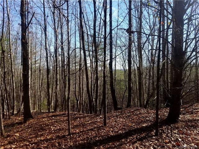 00 Round Mountain Parkway #63, Lenoir, NC 28645 (#3295636) :: LePage Johnson Realty Group, LLC