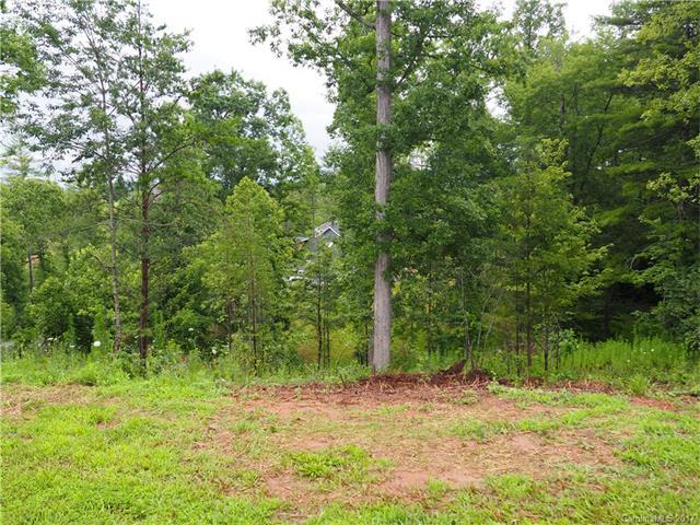 99999 New Stock Road #19, Weaverville, NC 28787 (#3298631) :: Stephen Cooley Real Estate Group