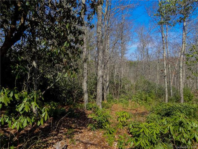 137 Pack Drive #15, Spruce Pine, NC 28777 (#3300831) :: LePage Johnson Realty Group, LLC
