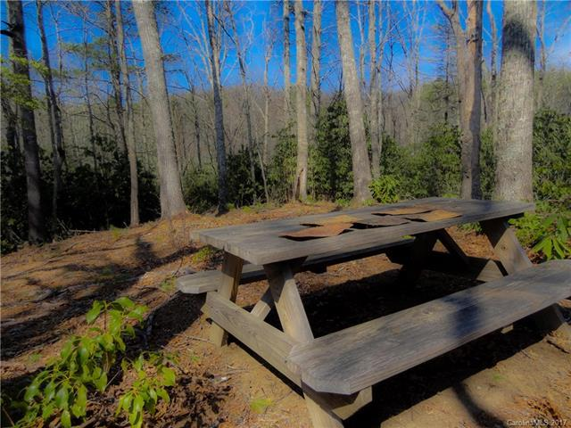 TBD Den Drive #10, Spruce Pine, NC 28777 (#3300837) :: LePage Johnson Realty Group, LLC
