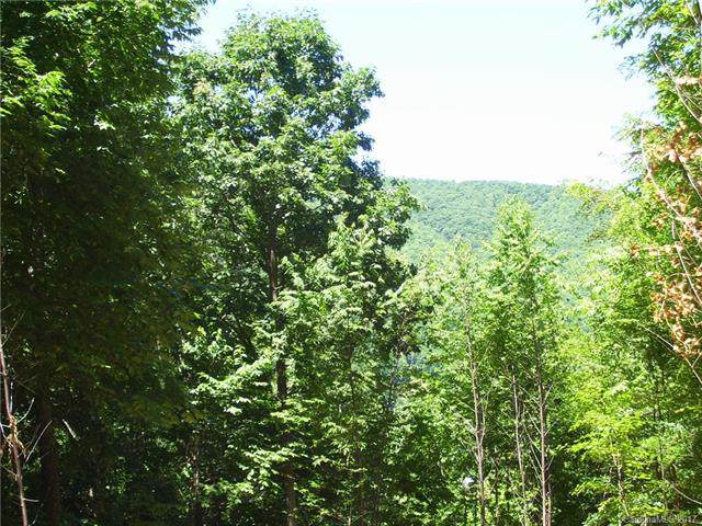 14 Bow N Arrow Cove #14, Waynesville, NC 28785 (#3306760) :: Caulder Realty and Land Co.