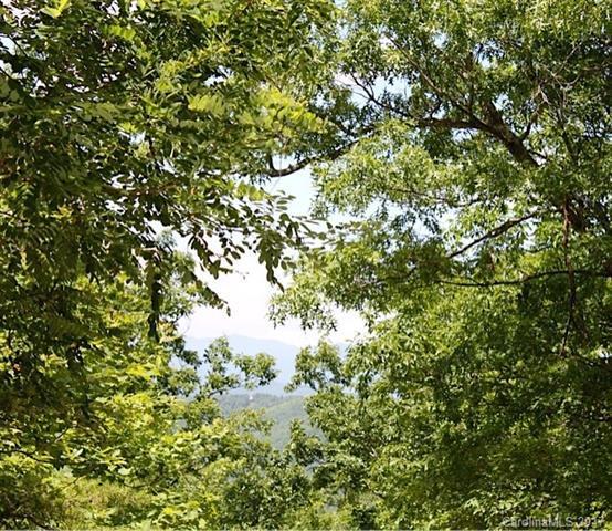 999 Prospectors Trail, Black Mountain, NC 28711 (#3307390) :: Rinehart Realty