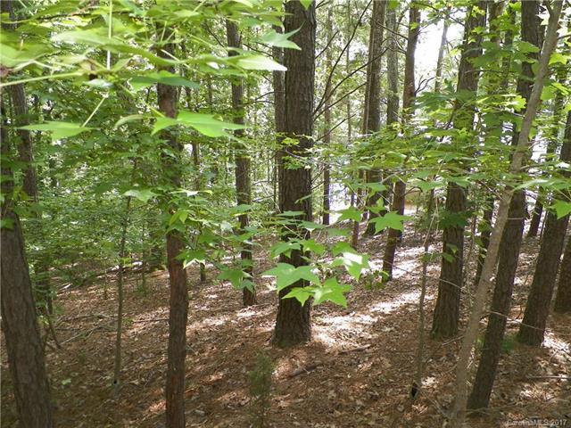 Lot 10 Emerald Shores Road, Mount Gilead, NC 27306 (#3308575) :: MartinGroup Properties