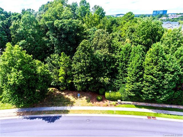 14444 Ballantyne Country Club Drive, Charlotte, NC 28277 (#3309066) :: The Andy Bovender Team