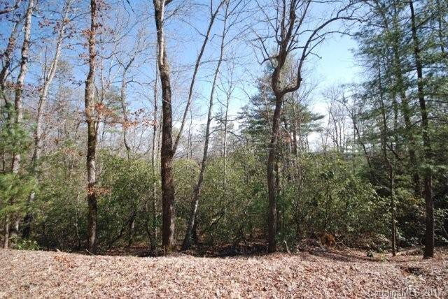 157 Springhouse Trail - Photo 1