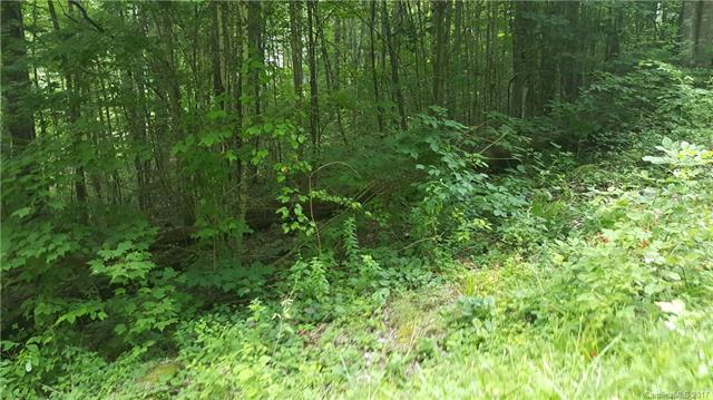 Lot 8 Sacred Cove Estates, Clyde, NC 28721 (#3310266) :: Rinehart Realty