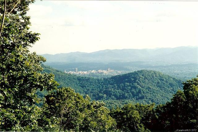 4 Hunters Way #4, Asheville, NC 28804 (#3310594) :: Cloninger Properties