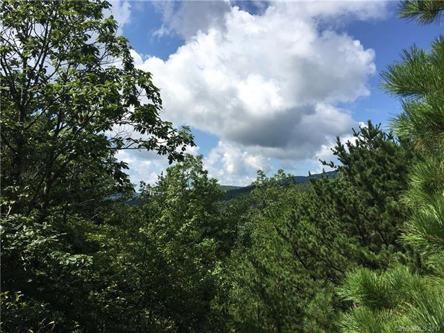 10 acres E High Rock Acres Road, Black Mountain, NC 28711 (#3312553) :: Exit Realty Vistas
