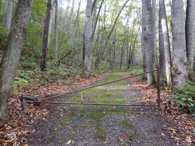Lots 216 & 217 Apple Creek Acres Road, Waynesville, NC 28786 (#3312782) :: Rinehart Realty