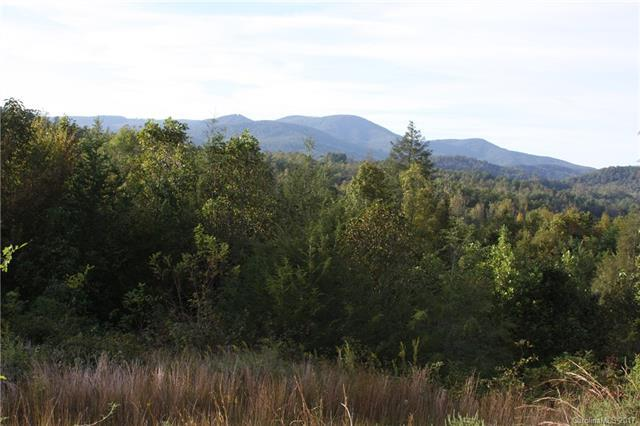 97 Southern Scenic Heights 3R, Hendersonville, NC 28792 (#3313813) :: Puffer Properties