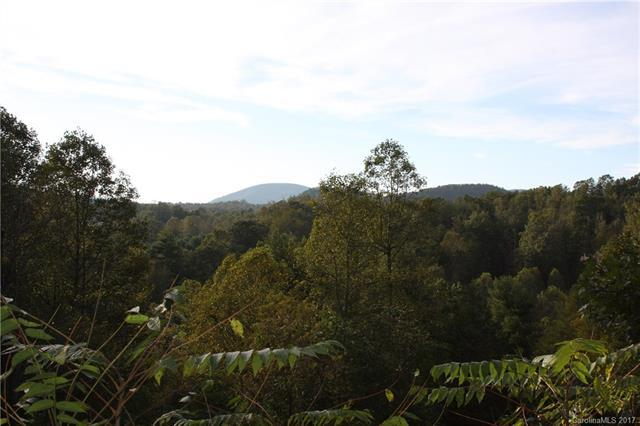 9999 Southern Scenic Heights #5, Hendersonville, NC 28792 (#3313818) :: Puffer Properties