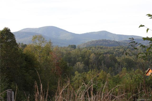 9999 Southern Scenic Heights Trail 2R, Hendersonville, NC 28792 (#3313821) :: Puffer Properties