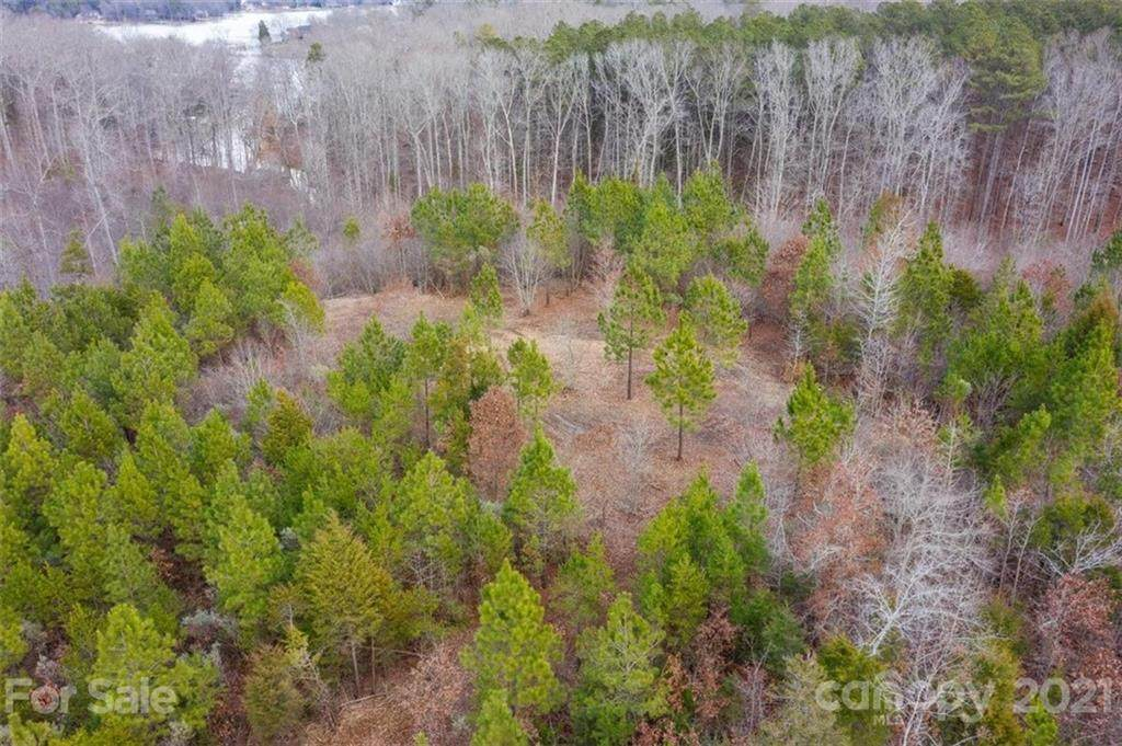 13.95 acres Mount Gallant Road - Photo 1
