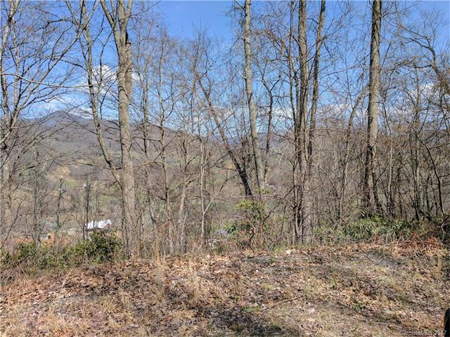 Lot #19 Flowing Hills Drive #19, Clyde, NC 28721 (#3317362) :: Exit Mountain Realty
