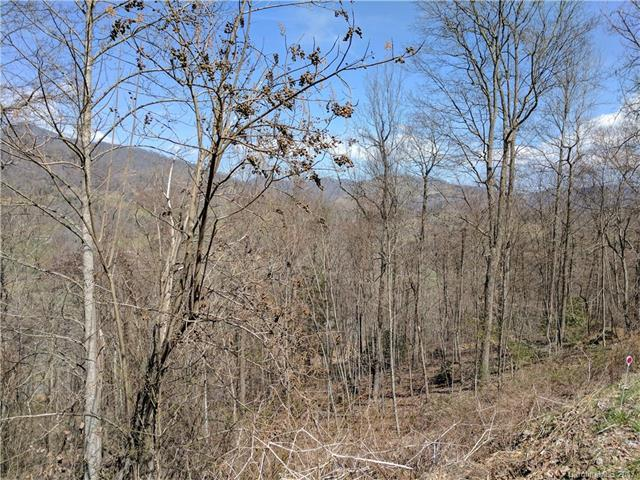 Lot #20 Winfield Drive #20, Clyde, NC 28721 (#3317364) :: Exit Mountain Realty