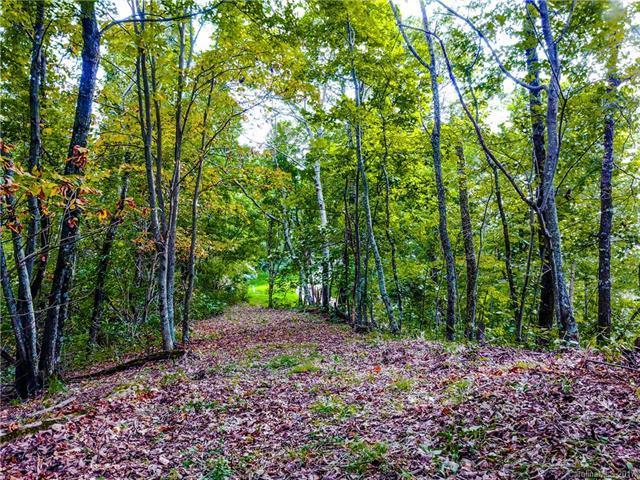 Lot 28 Locust Ridge, Rutherfordton, NC 28167 (#3317916) :: Puffer Properties