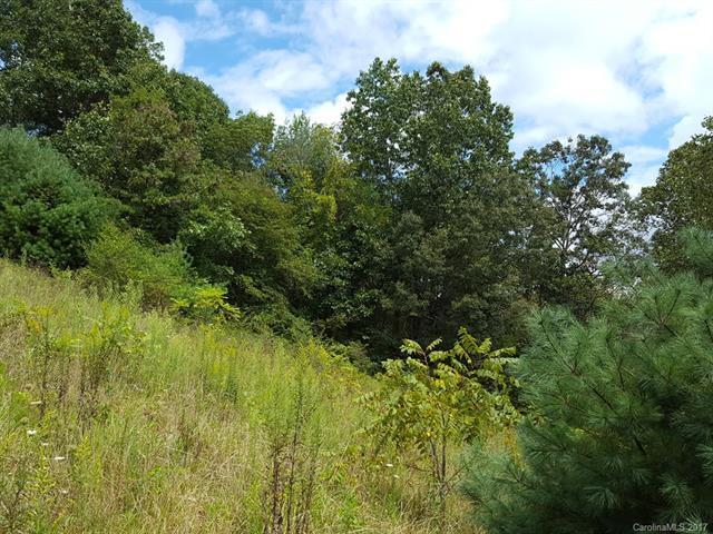 Parcel 2 Hawks Landing, Weaverville, NC 28787 (#3318151) :: Puffer Properties