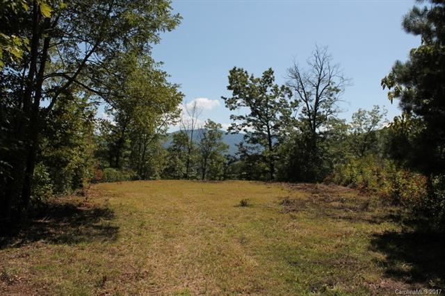 0 Biscuit Road #7, Bryson City, NC 28713 (#3319094) :: Rinehart Realty