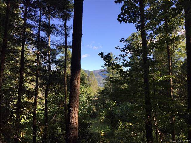 0 Proctor Road, Lake Lure, NC 28746 (#3319335) :: Rinehart Realty