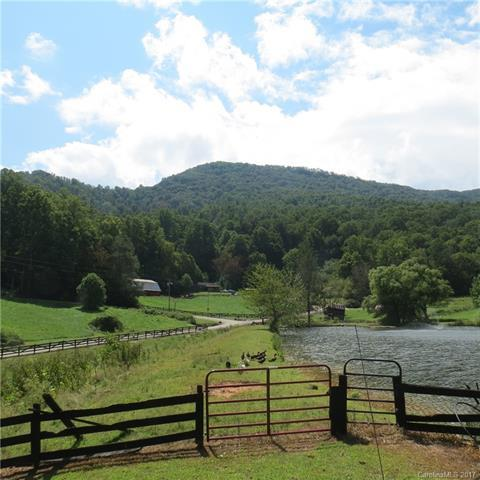 13 Rugged Top Road R-13, Waynesville, NC 28785 (#3320534) :: Puffer Properties