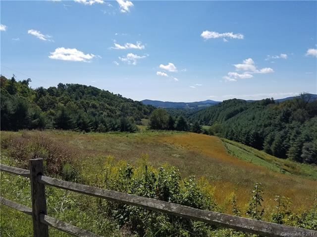 003 Laurel Highlands Drive, Grassy Creek, NC 28617 (#3320546) :: Rinehart Realty