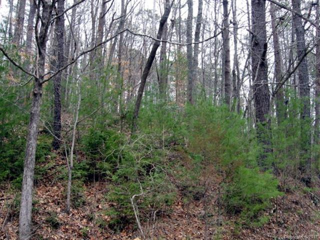Lot #1 Cheoah View Road #1, Bryson City, NC 28713 (#3325237) :: Exit Mountain Realty