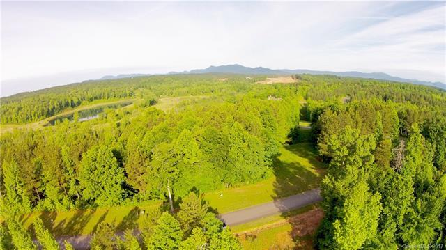 70 Overmountain Trace #70, Tryon, NC 28782 (#3325609) :: Odell Realty Group
