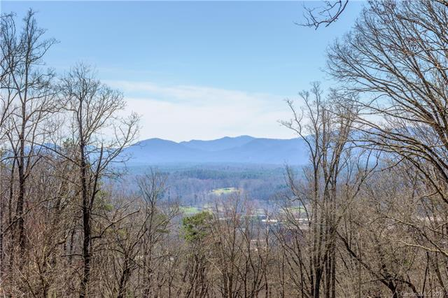 38 Samuel Ashe Drive #54, Asheville, NC 28805 (#3325875) :: Carlyle Properties