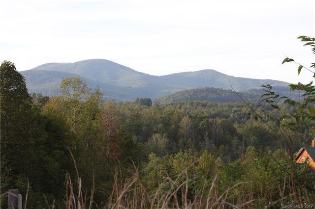 52 Whitetail Deer Run #9, Hendersonville, NC 28792 (#3327096) :: Rinehart Realty
