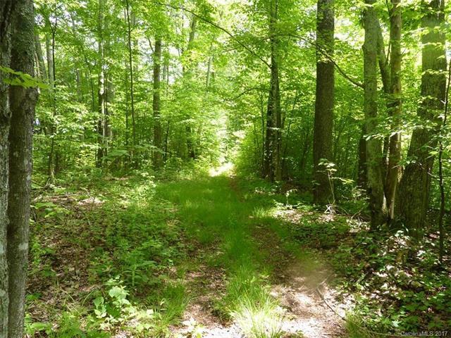 TBD Running Bear Road, Hot Springs, NC 28743 (#3327390) :: Keller Williams Professionals
