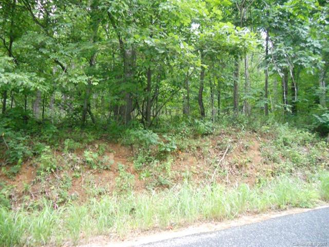 Lot 17 Skyuka Mountain Road, Columbus, NC 28722 (#3328422) :: High Performance Real Estate Advisors