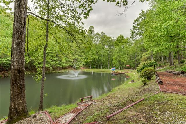 204 Woods End Drive, Hendersonville, NC 28739 (#3331018) :: High Performance Real Estate Advisors