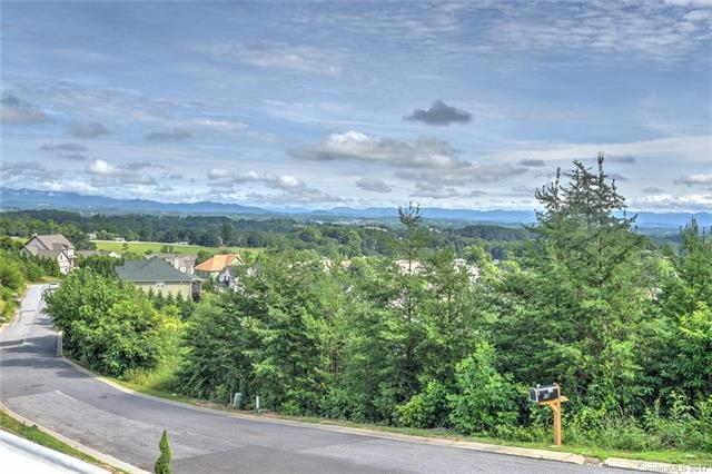 129 Climbing Aster Way #64, Asheville, NC 28806 (#3331131) :: Puffer Properties
