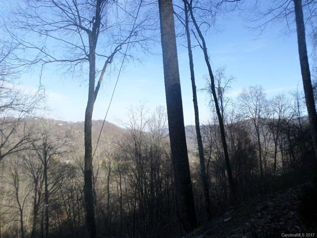 62 Turkey Hollow Drive #62, Waynesville, NC 28785 (#3336821) :: Puffer Properties