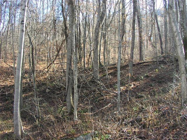 Lot 309 Burnt Fork Trail #309, Waynesville, NC 28786 (#3340590) :: Puffer Properties