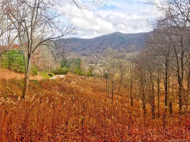 15-r Silent Forest Drive 15-R, Canton, NC 28716 (#3340640) :: Cloninger Properties